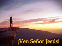 adv.venseñor