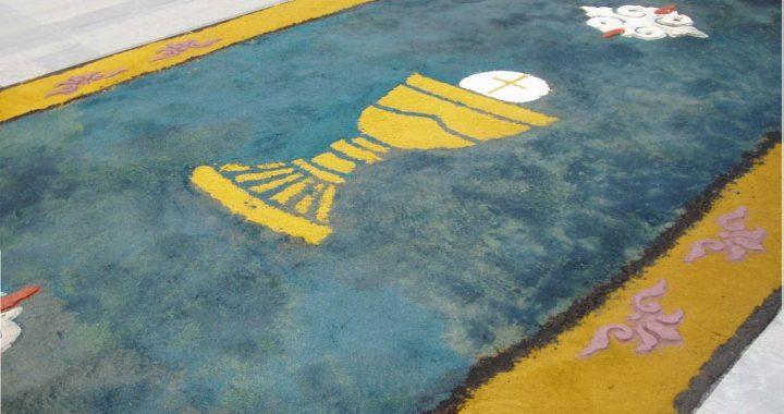 alfombra17 3